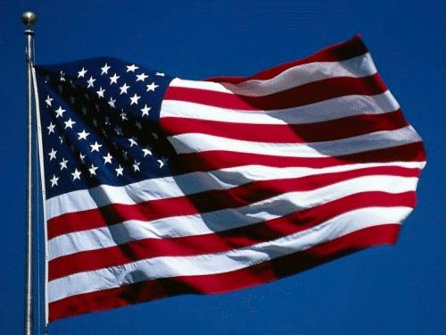 electionflag